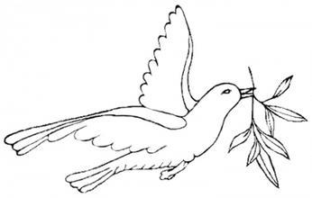 """挥笔画出了一只飞翔的鸽子--这就是""""和平鸽""""的雏形"""